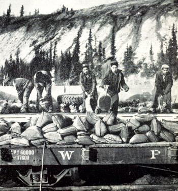 Loading bags of silver lead concentrate from a truck onto a flat car for Skagway, from where it is shipped south to Trail, B.C.
