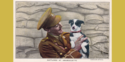 A postcard depicts a soldier holding a stray dog found during the 1916 Battle of Courcelette. The postcard belonged to Lieutenant Guy Elton Dingle, who served with the Canadian Mounted Rifles in France.